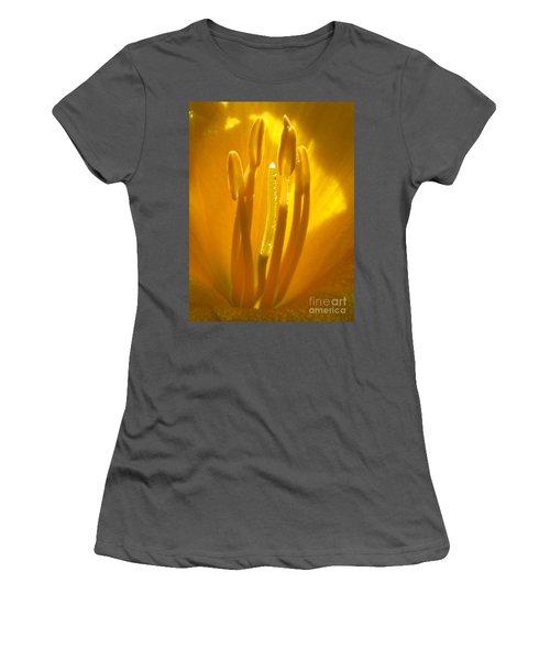 God's Light Shining Through Women's T-Shirt (Athletic Fit)
