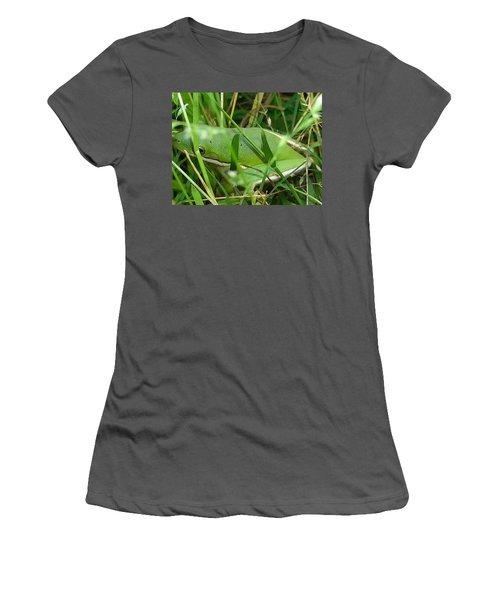 Hidden Frog Women's T-Shirt (Athletic Fit)