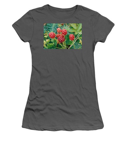 Highbush Blackberry Rubus Allegheniensis Grows Wild In Old Fields And At Roadsides Women's T-Shirt (Junior Cut) by Anonymous