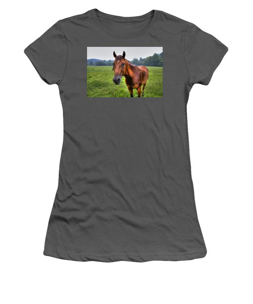 Horse In A Field Women's T-Shirt (Athletic Fit)