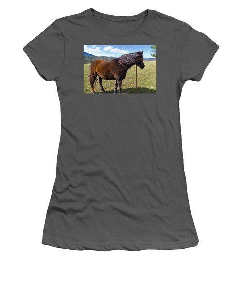 Horse Women's T-Shirt (Junior Cut) by Melinda Fawver