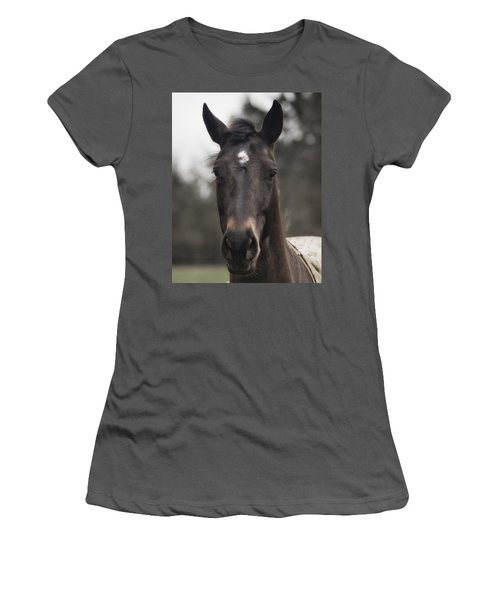 Horse With Gentle Eyes Women's T-Shirt (Junior Cut) by Belinda Greb