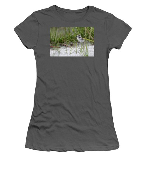 In The Grass - Wilson's Plover Chick Women's T-Shirt (Athletic Fit)