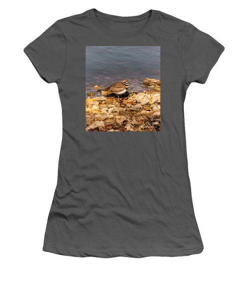 Kildeer On The Rocks Women's T-Shirt (Junior Cut) by Robert Frederick