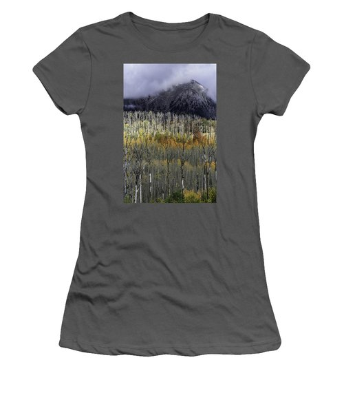 La Sal Seasonings Women's T-Shirt (Athletic Fit)