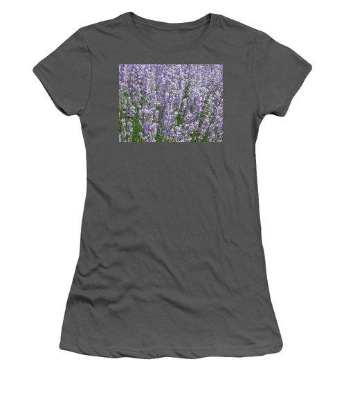 Women's T-Shirt (Junior Cut) featuring the photograph Lavender Hues by Pema Hou