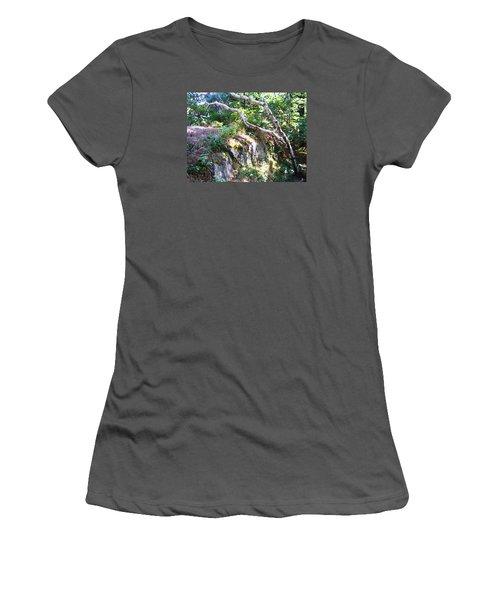 Maine Women's T-Shirt (Junior Cut) by Oleg Zavarzin
