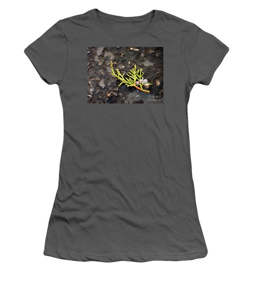 Women's T-Shirt (Junior Cut) featuring the photograph Missing Christmas by Meghan at FireBonnet Art
