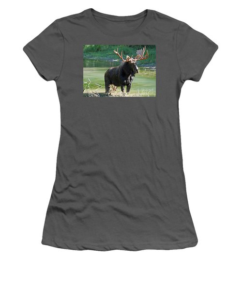 Moose Country Women's T-Shirt (Junior Cut) by Bob Hislop