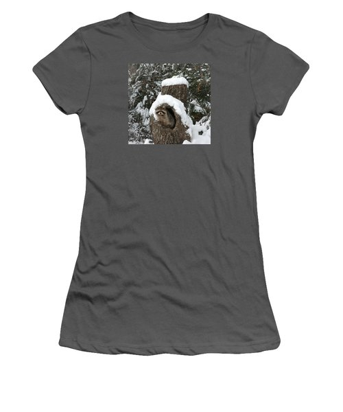 Mr. Raccoon Women's T-Shirt (Junior Cut) by Diane Bohna