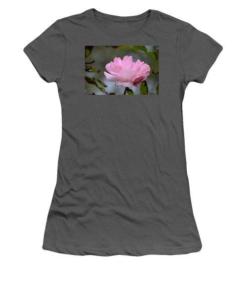 Women's T-Shirt (Junior Cut) featuring the photograph The Last Rose by Debra Martz