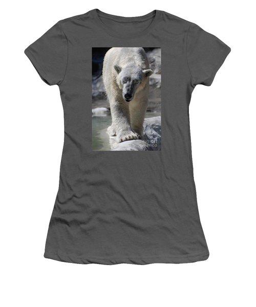 Polar Bear Balance Women's T-Shirt (Junior Cut) by DejaVu Designs