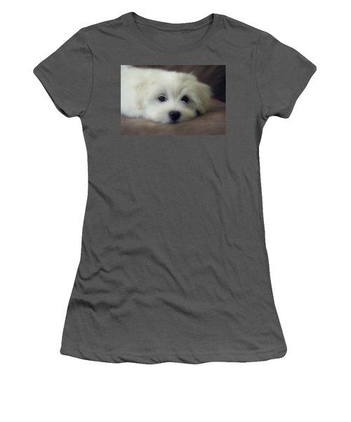 Puppy Eyes Women's T-Shirt (Junior Cut) by Melanie Lankford Photography