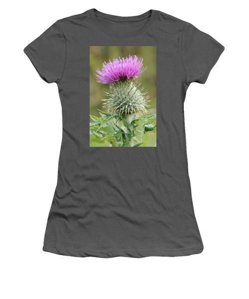 Purple Thistle Women's T-Shirt (Athletic Fit)