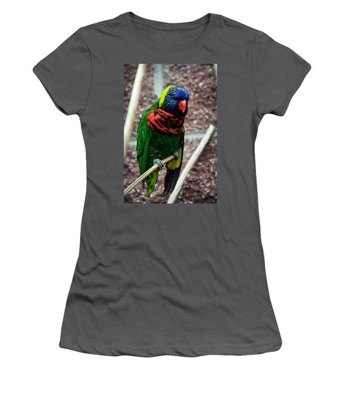 Women's T-Shirt (Junior Cut) featuring the photograph Rainbow Lory Too by Sennie Pierson
