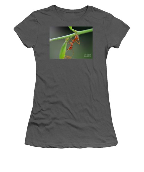 Red Ant Women's T-Shirt (Junior Cut) by Michelle Meenawong