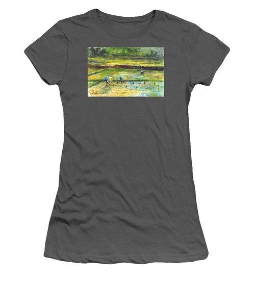 The Rice Paddy Field Women's T-Shirt (Junior Cut) by Carol Wisniewski