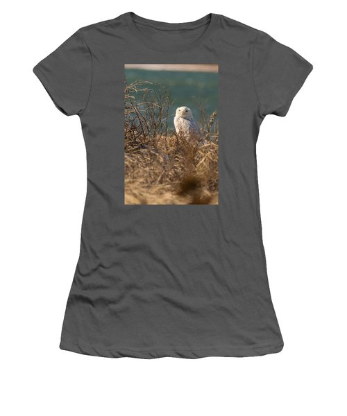 Snowy Owl At The Beach Women's T-Shirt (Athletic Fit)