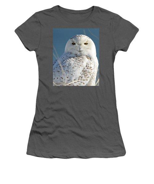 Snowy Owl Women's T-Shirt (Athletic Fit)