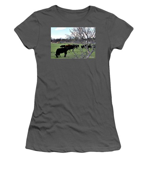 Spring In The Hay Meadow Women's T-Shirt (Athletic Fit)