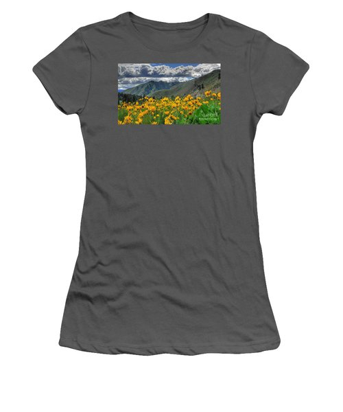Springtime At Gallagher Women's T-Shirt (Athletic Fit)