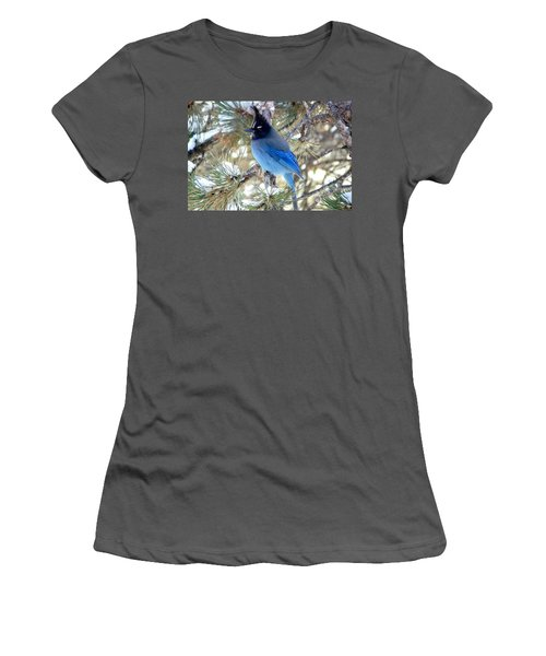 Steller's Jay Profile Women's T-Shirt (Athletic Fit)
