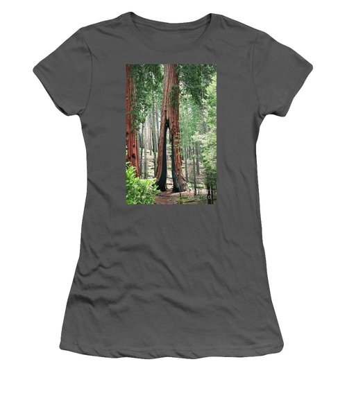 Survivor Women's T-Shirt (Junior Cut) by Ellen Cotton
