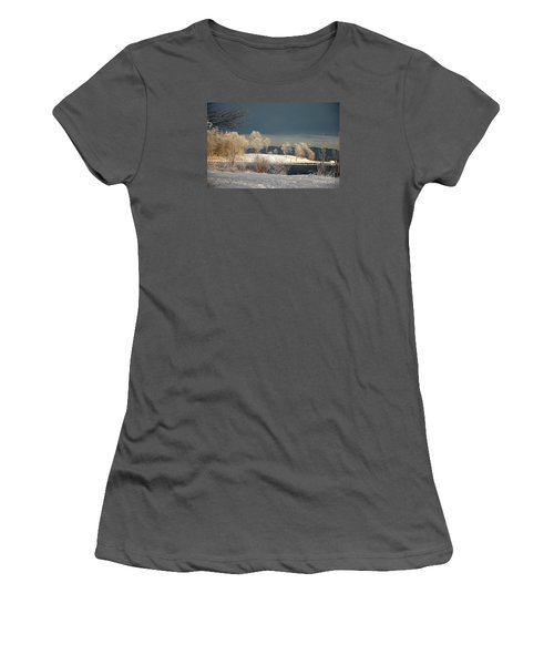 Swans On A Frosty Day Women's T-Shirt (Junior Cut) by Randi Grace Nilsberg