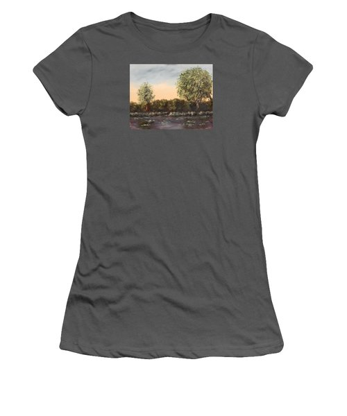 The Far End Of The Pond Women's T-Shirt (Junior Cut) by Alan Mager