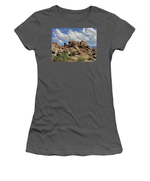 The Rock Garden Women's T-Shirt (Junior Cut) by Michael Pickett