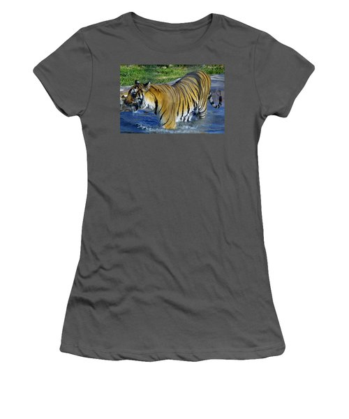 Tiger 4 Women's T-Shirt (Athletic Fit)