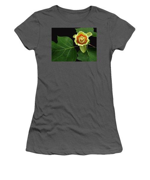 Tulip Bloom Women's T-Shirt (Athletic Fit)