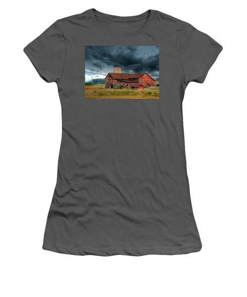 Weathering The Storm Women's T-Shirt (Junior Cut) by Lori Deiter