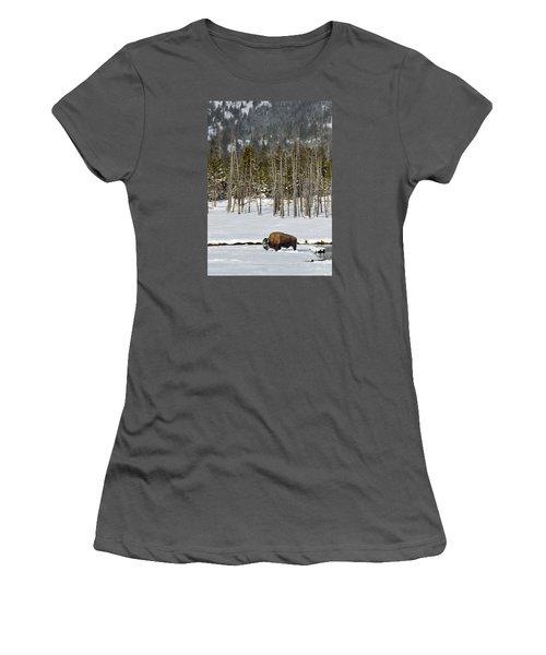 Yellowstone Winter Women's T-Shirt (Junior Cut) by Alan Toepfer