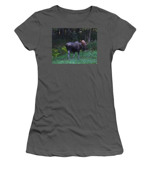 Women's T-Shirt (Junior Cut) featuring the photograph Morning Light by Doug Lloyd