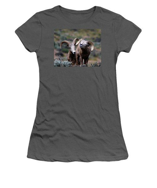 Women's T-Shirt (Junior Cut) featuring the photograph Smile by Steve McKinzie