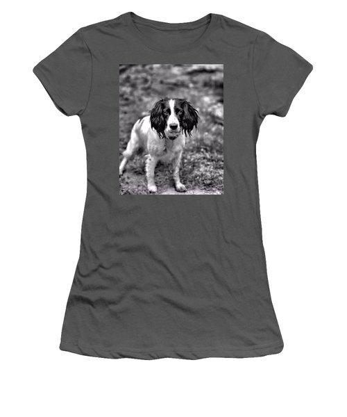 Springer Spaniel Women's T-Shirt (Athletic Fit)