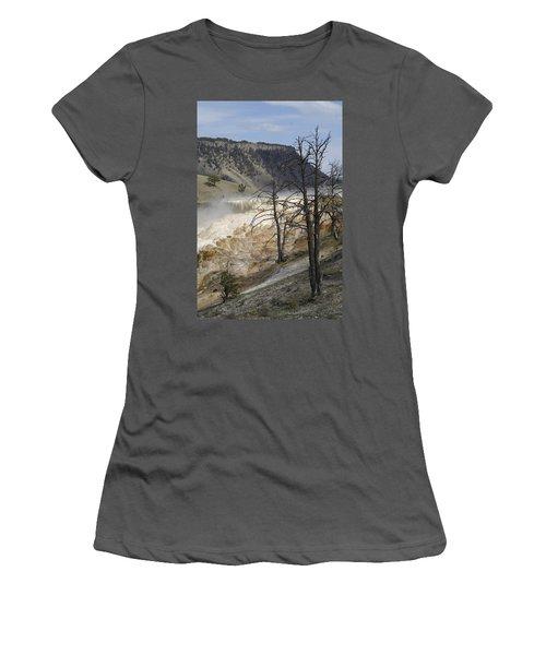 Yellowstone Nat'l Park Women's T-Shirt (Junior Cut) by Henri Irizarri