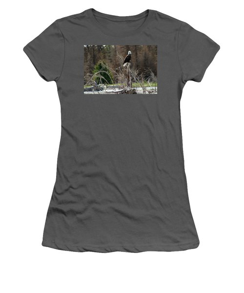 American Eagle On Snake River Women's T-Shirt (Junior Cut) by Living Color Photography Lorraine Lynch