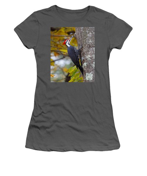 Beautiful Pileated Woodpecker Women's T-Shirt (Athletic Fit)