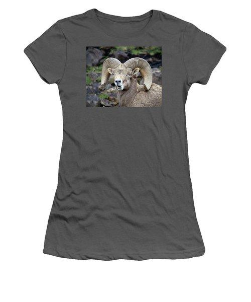 Bighorn Giant Women's T-Shirt (Junior Cut) by Steve McKinzie