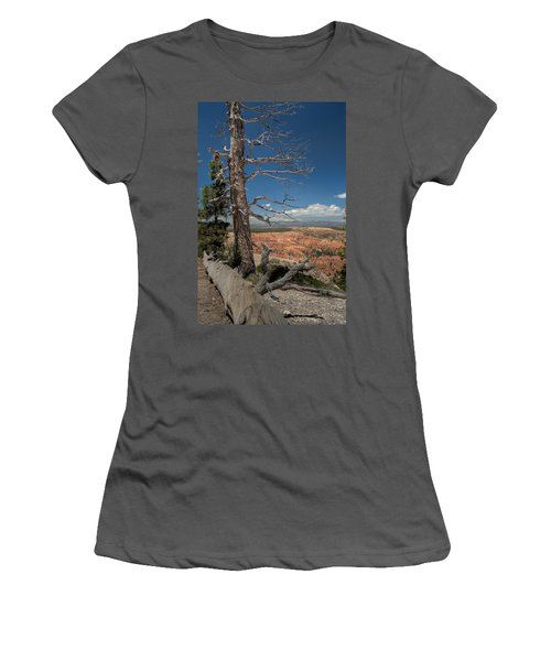 Bryce Canyon - Dead Tree Women's T-Shirt (Athletic Fit)
