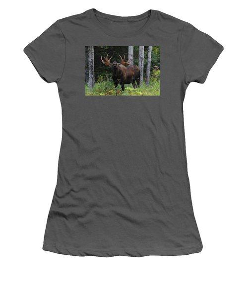 Women's T-Shirt (Junior Cut) featuring the photograph Bull Moose Flehmen by Doug Lloyd