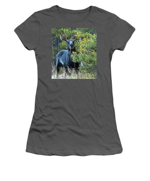 Bull Moose Women's T-Shirt (Athletic Fit)