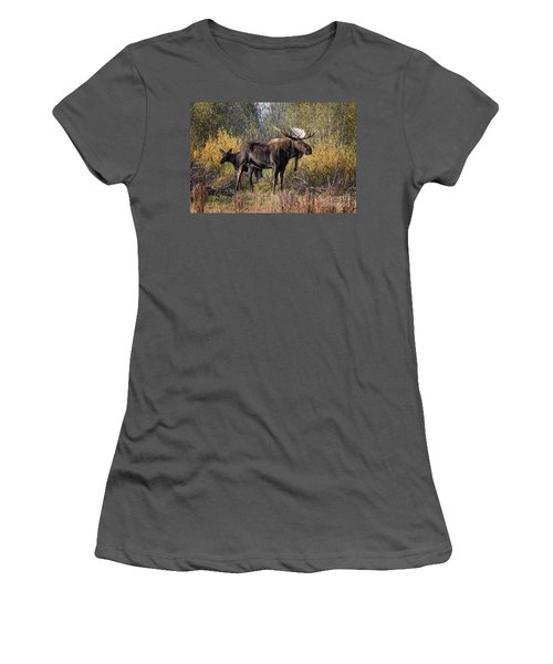 Bull Tolerates Calf Women's T-Shirt (Athletic Fit)