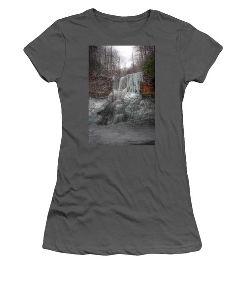 Cascades In Winter 3 Women's T-Shirt (Junior Cut) by Dan Stone