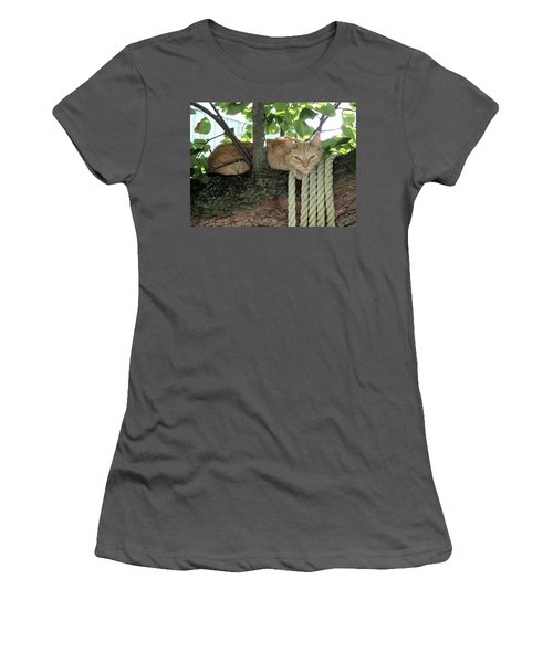 Women's T-Shirt (Junior Cut) featuring the photograph Catnap Time by Thomas Woolworth