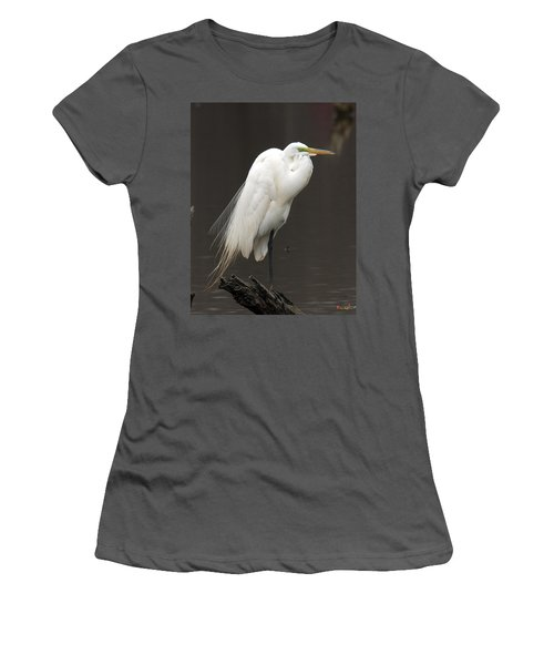 Great Egret Resting Dmsb0036 Women's T-Shirt (Athletic Fit)