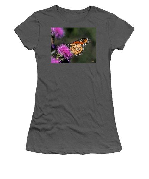 Monarch On Thistle 13f Women's T-Shirt (Junior Cut) by Gerry Gantt