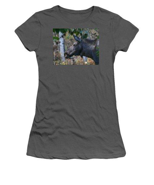 Women's T-Shirt (Junior Cut) featuring the photograph On Alert by Doug Lloyd